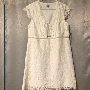 Tobi Short sleeve lace dress